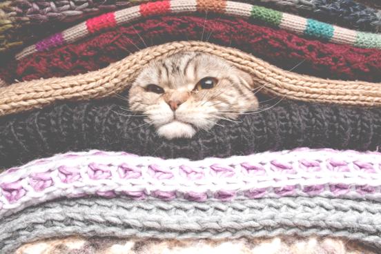 cuidados com roupas de frio