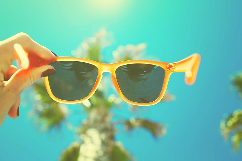 piquenique em dias de sol