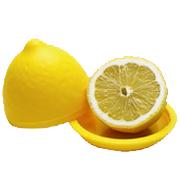 Pote p/ gaurdar/conservar limão