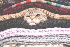 O frio e os cuidados com as roupas